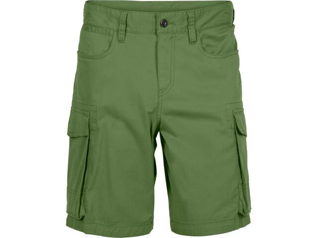 Norrøna M's /29 Cargo Shorts Iguana